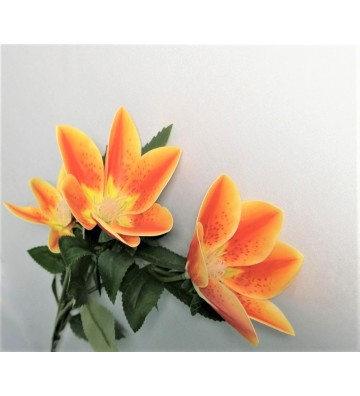 Rama individual de flores...