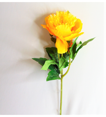 Flor individual Peony amarilla
