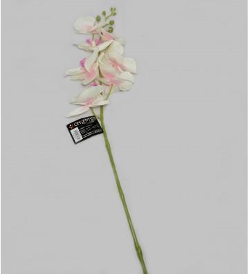 Ramo de orquídeas...